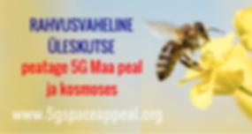 Estonian business card.png