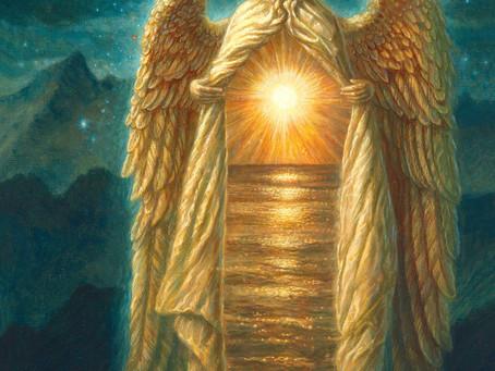 Virgo - La Perfezione del Disegno Divino