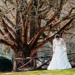 Walt+Anne Miller Wedding 12.16.17