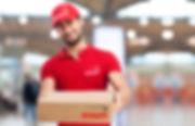 direct deliveries, delegates courier, franchise opportunity