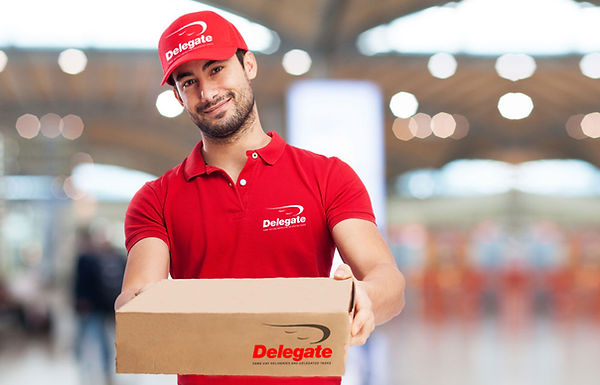 direct deliveries, delegates courier, franchise opportunity