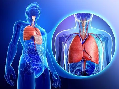 Firmas de Vapeadores son investigadas por detectar daño pulmonar grave