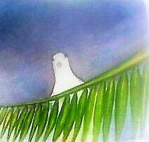 paloma de la paz.jpg