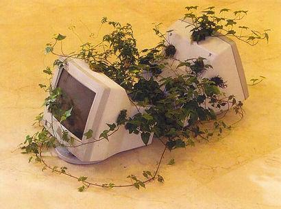 5-Naturaleza_venciendo_a_Tecnología_2004