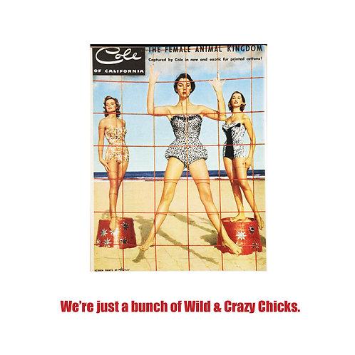 wild n crazy chicks