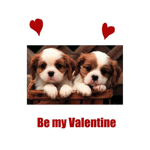 Valentines - 2 puppies