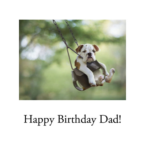 Dad - dog in swing