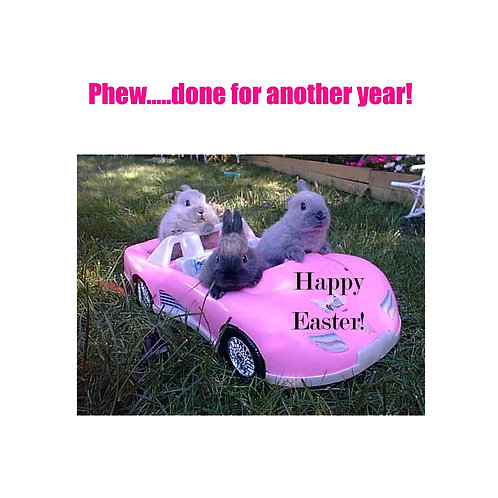 Easter - delivery car bunnies
