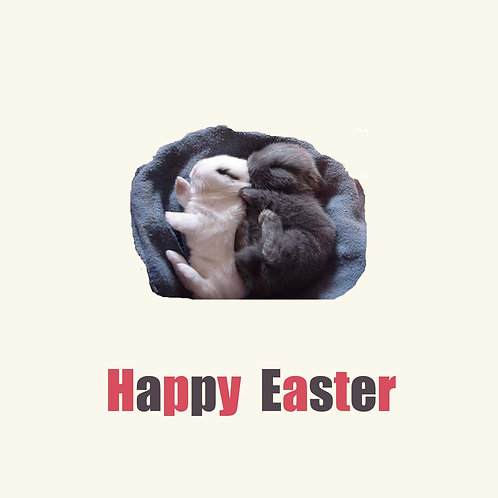 Easter - spooning bunnies