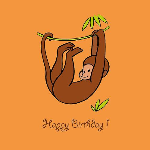 monkey on orange