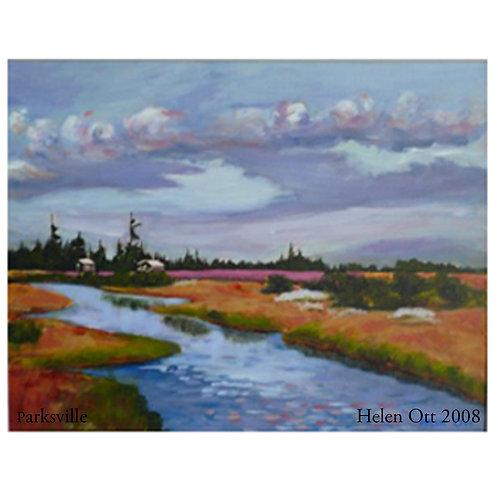 Parksville marsh - Helen Ott