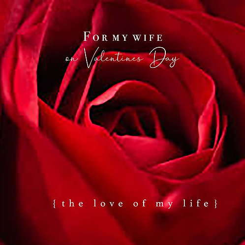 Valentine to wife - red rose