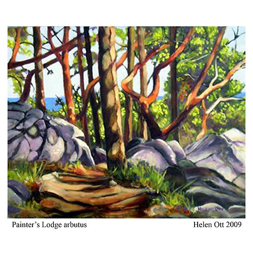 Painter's Lodge arbutus - Helen Ott