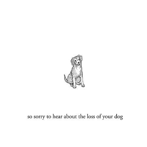 sympathy for dog (1)
