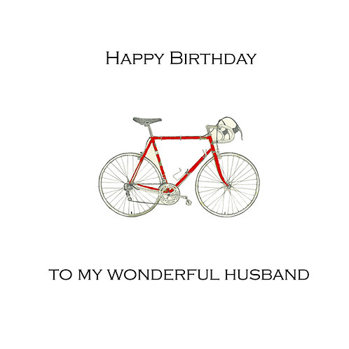 husband birthday -bike