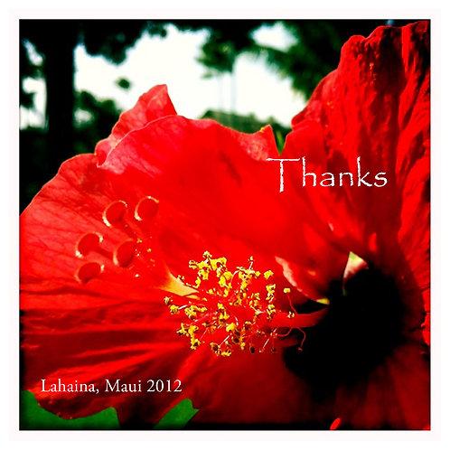 Lahaina flower - thanks