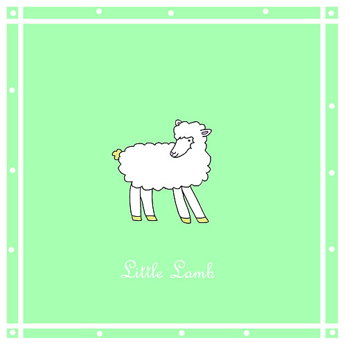 baby - Little lamb