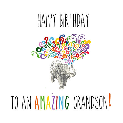 Grandson - elephant