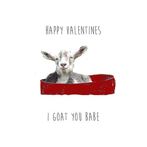 I goat you babe