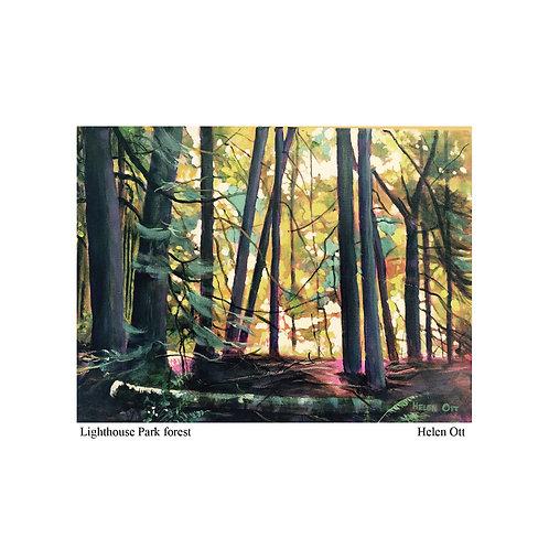 Lighthouse Park forest - Helen Ott