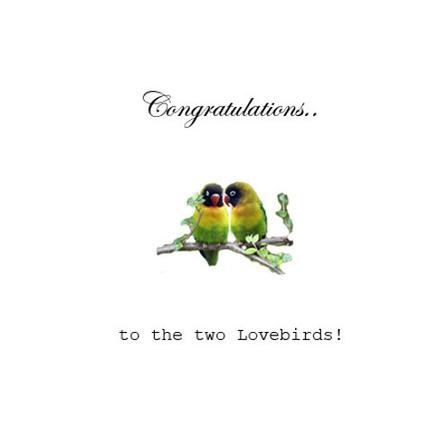 Ann. to couple - lovebirds