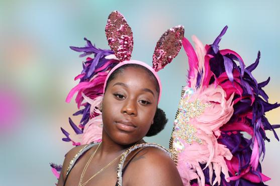Carnival bunny
