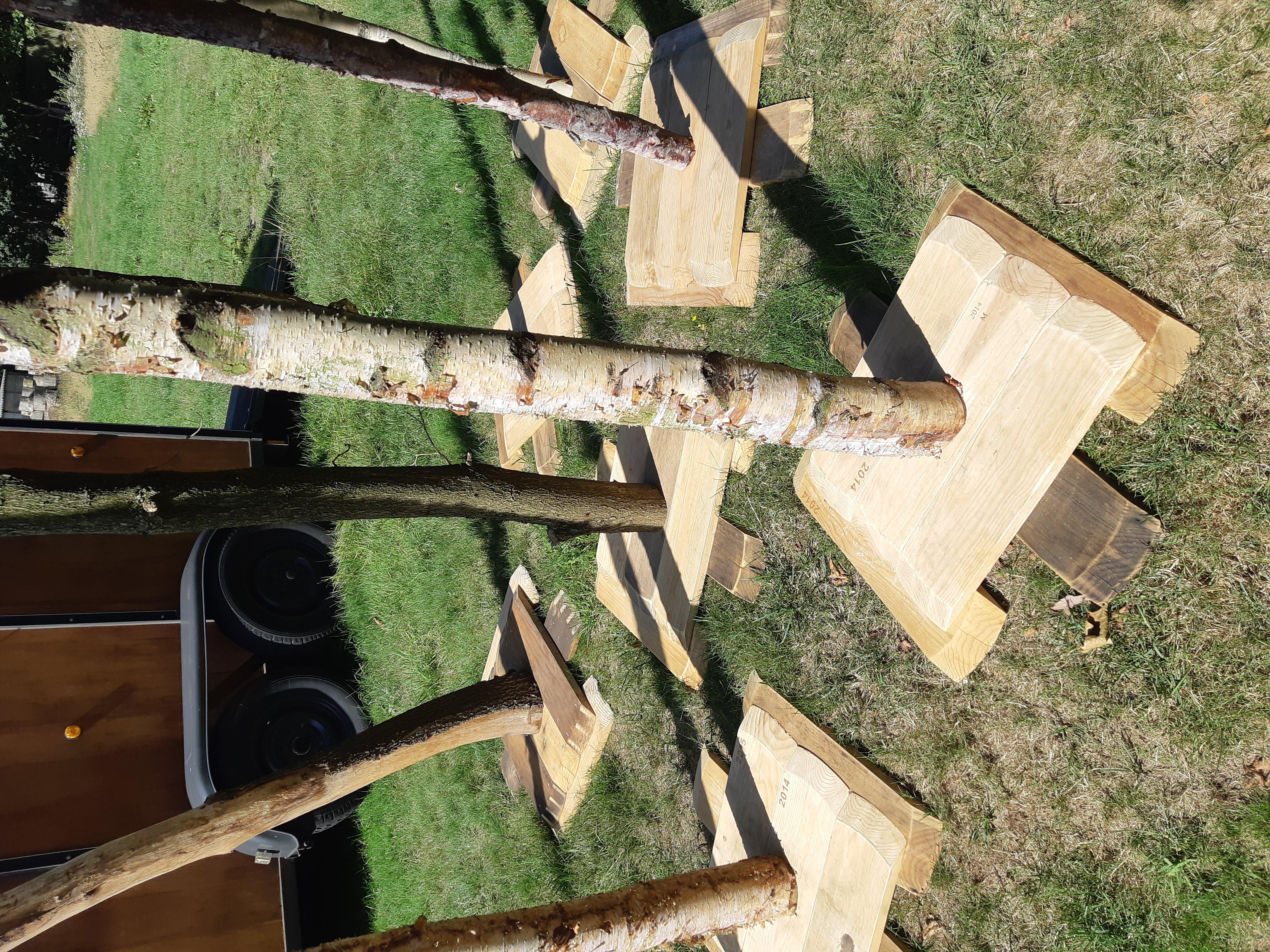 Verlichtingspalen woodfest events