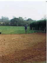 potager printemps 91.jpg