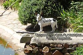 happie guide.jpg