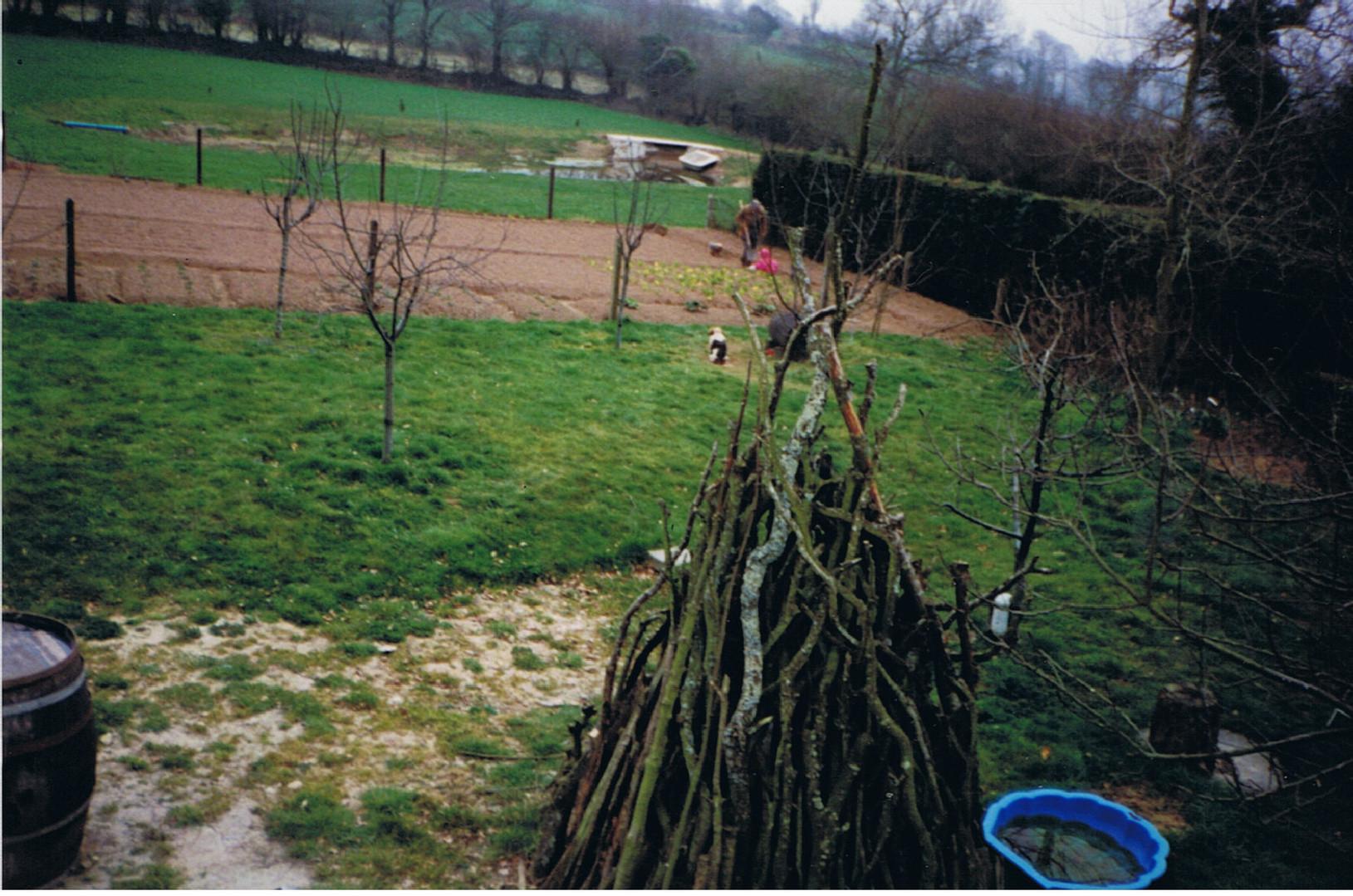 potager printemps 96.jpg