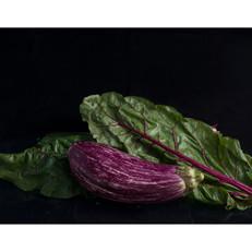 Eggplant_AndyAllen_9342 copy.jpg