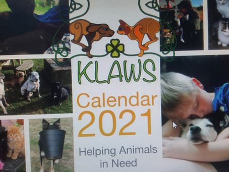 Support KLAWS at Christmas