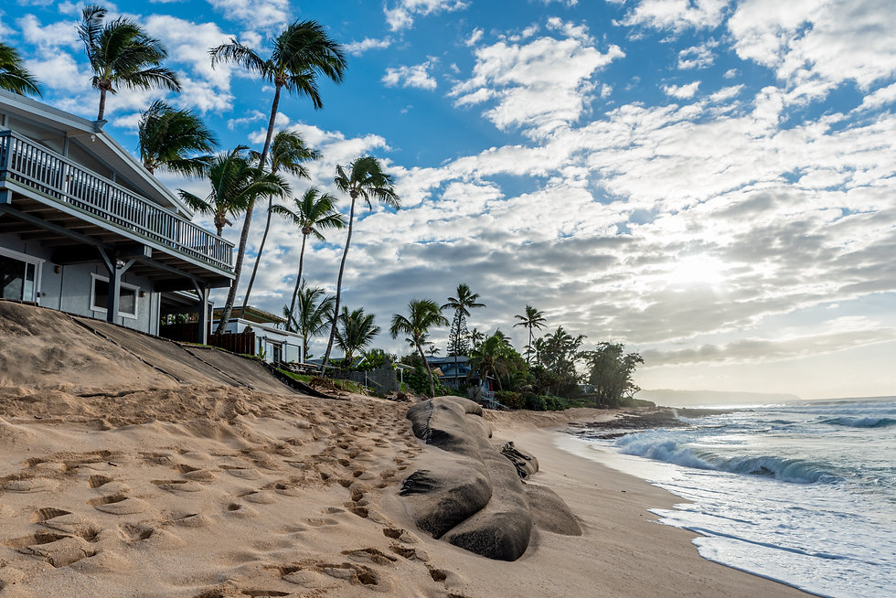 Hawaii ocean shoreline and homes in the day
