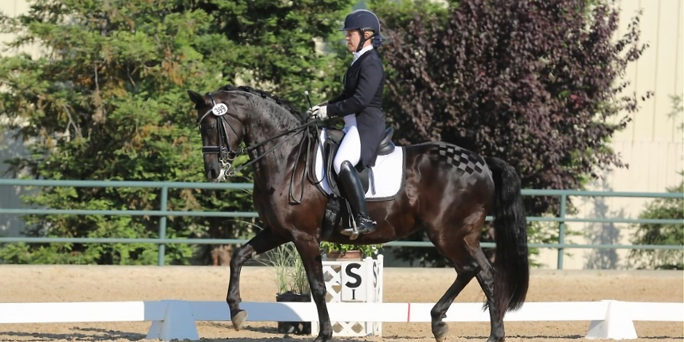 Introduction to Half steps, Passage, Piaffe; From the ground and under saddle