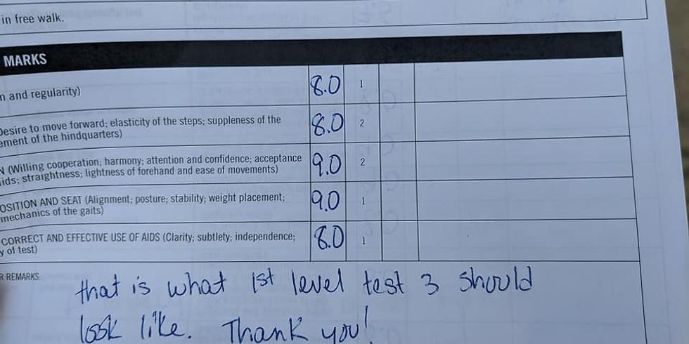 Fix-A-Test and Scribing Clinic Sun