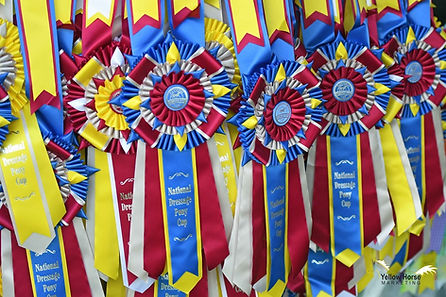 pony cup ribbone.jpg