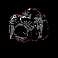 lodestar logo(1).png