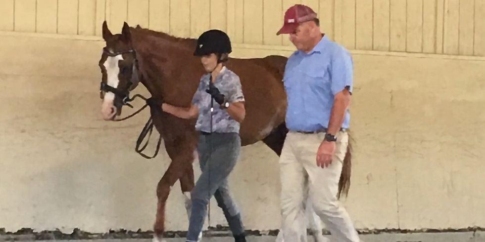CDS Sport Horse In Hand Clinic- CANCELLED due to the pandemic