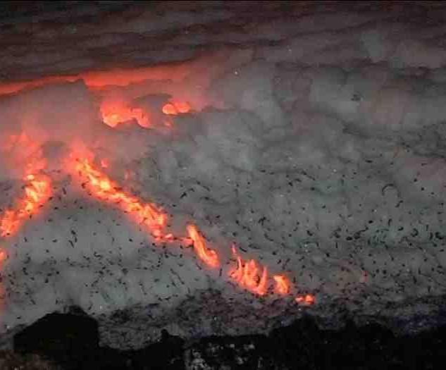 lake-fire.jpg