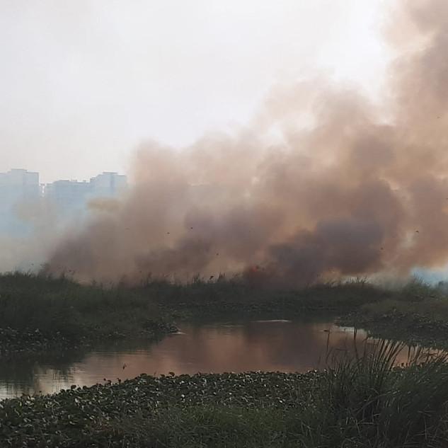 varthur lake fire-901997680-1548036671.j