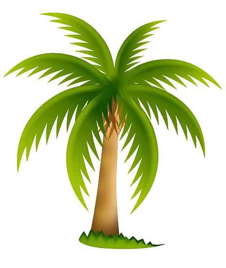 Palmera Tropical Png Imagui
