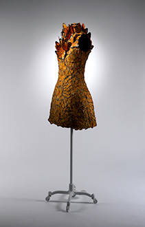 The Costume Institute Anna Wintour - The Culture News