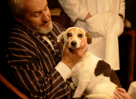 Heart of a Dog by Art-Vic Theatre at The Lion and Unicorn Theatre, London
