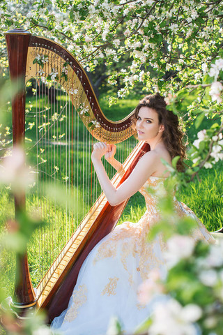 A Beautiful Voice and a Harp