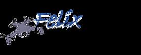 Logo_Felix-Diehlmann_Klein.png