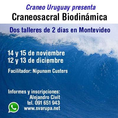 Craneo NOVDEC2020.jpeg