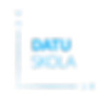 DS_jaun_logo_transp_blue.png