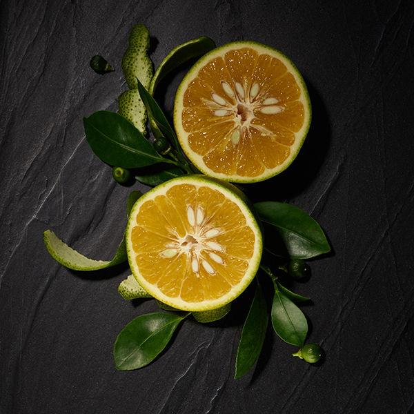 Signature Collection Amalfi Citrus