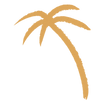 Palm-Tree-2-Citrus-Texture.png
