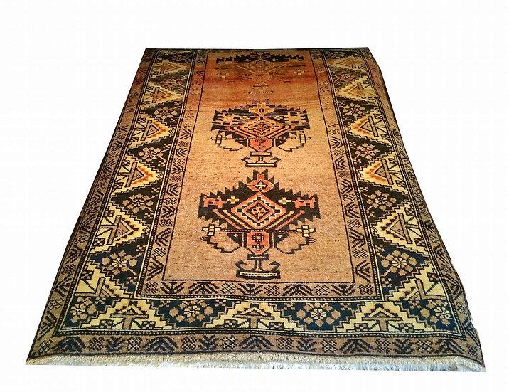 A27 4.4 x 6.6 Persian Lori